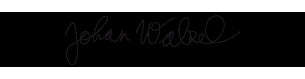 Johan Walzel